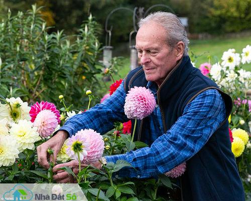 Elizabeth Williams, con gái của đôi vợ chồng cho biết rất sốc trước bức sự việc. Vườn hoa là điều duy nhất giúp cha cô vượt qua bệnh tật tuổi già.