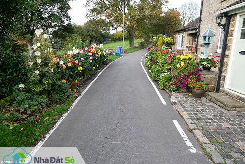 Cặp vợ chồng Brian và Sally Williams đã chăm sóc những luống hoa hai bên đường trước nhà mình ở một con đường nhỏ thuộc thành phố Sheffiled (Nam Yorkshire), 28 năm qua.